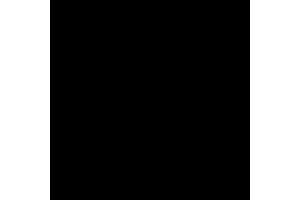 iPad Reparatur-logo